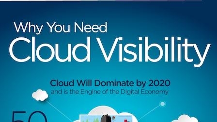 Why you need cloud visibility.pdf thumb rect larger