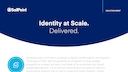 Sailpoint identity at scale delivered.pdf thumb rect large